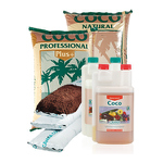 Canna Coco Gruppe © Imagro